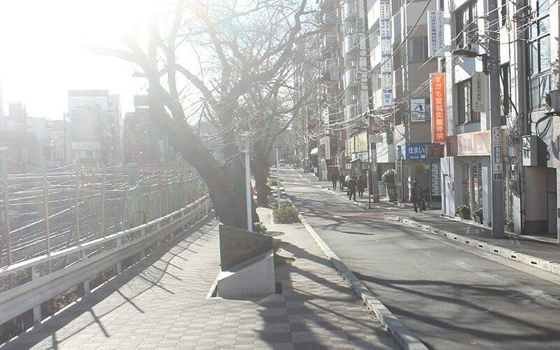 途中橋が2つあります。2つ目の橋(江戸橋)を左に曲がって下さい。