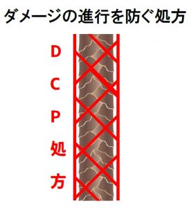 WP用DCP